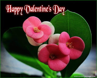 happy valentine day images for facebook