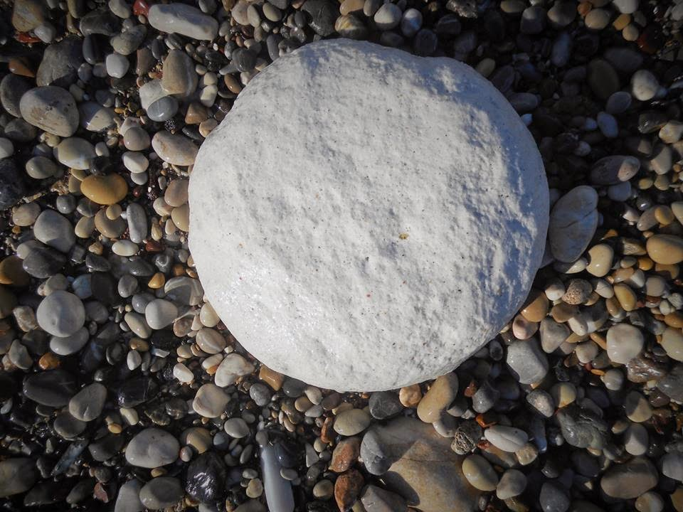 Pebble.Photo Christos Katsoulas