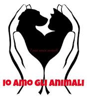 http://famigliagandini.blogspot.it/2011/10/sei-cani-barbaramente-uccisi.html