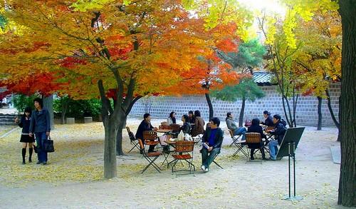 Melancong free ketika musim luruh di Korea