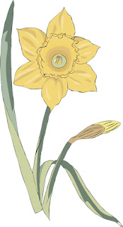 Clipart Image of a Single Daffodil