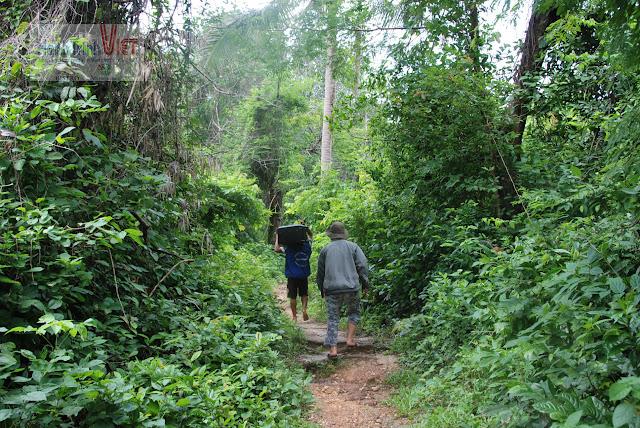 Trên đường đi Check in khách sạn - phải lội bộ qua một cánh rừng, coi chừng bị lạc nhá