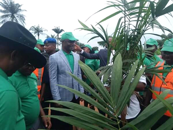 Growing Abia economy through Agriculture