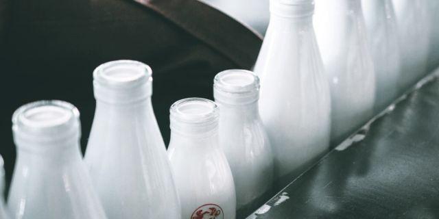 Embotellando leche