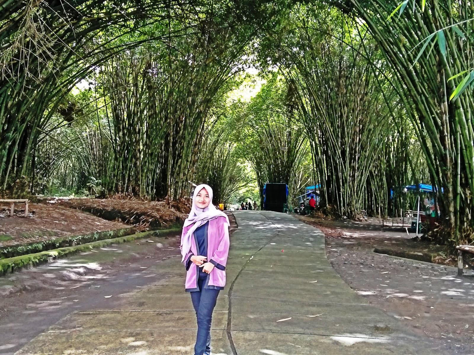 Hutan Bambu Bali View Di Kota Lumajang Jejak Tulisan