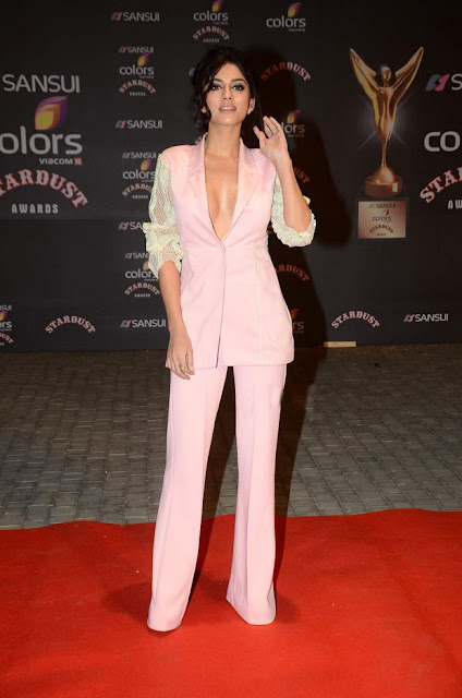 Sapna Pabbi Sizzling  at Stardust Awards 2015 3.jpg