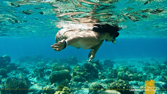 Linapacan Island Hopping Tour Ginto Reef Snorkeling