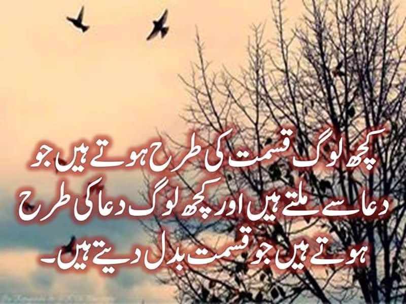 Urdu Poetry Best Urdu Poetry About Love Love Urdu Images Shayeri