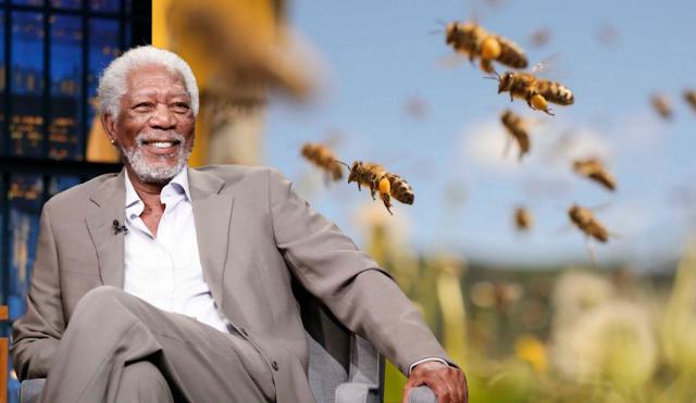 Morgan Freeman convierte su rancho de 50 hectáreas en santuario para salvar a las abejas