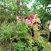 Kelompok  Lestari Desa Sambori, Duta NTB Lomba TOGA