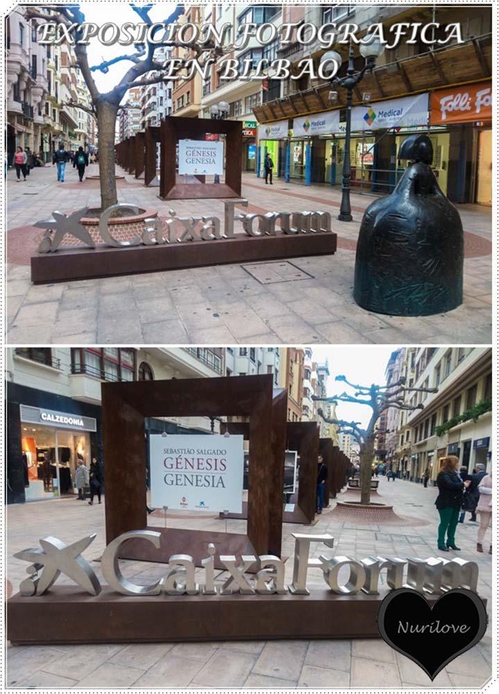 una exposición fotográfica en Bilbao gracias a CaixaForum. Fotos maravillosas