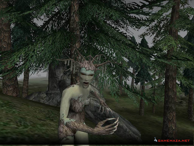 The Elder Scrolls III Morrowind Tribunal Bloodmoon Gameplay Screenshot 3