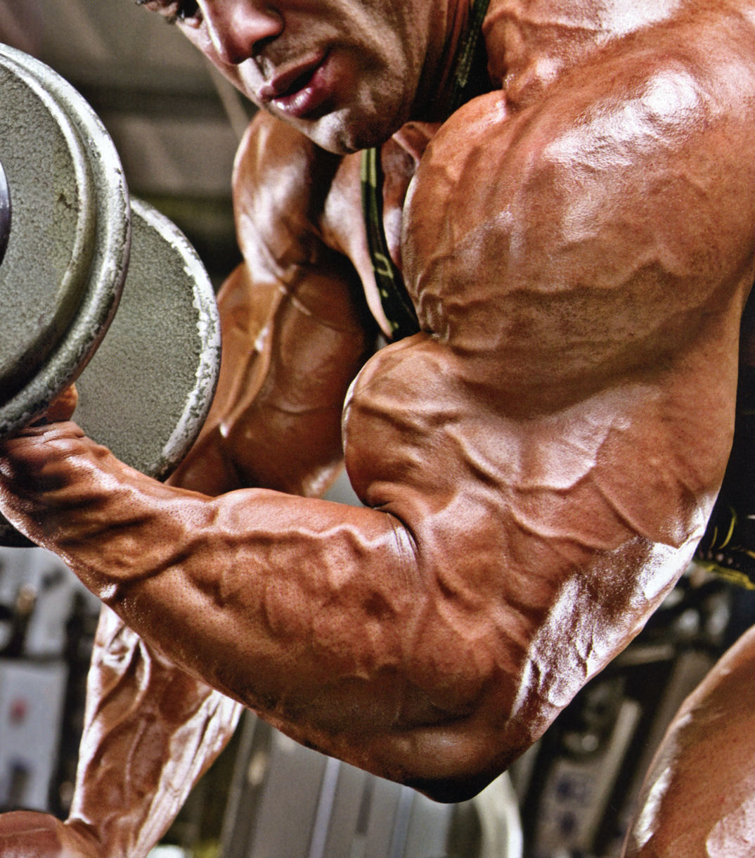 Knights of Bodybuilding: MOE EL MOUSSAWI