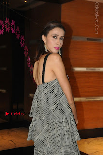Indian Actress Model Alesia Raut Stills in Sleeveless Long Dress  0008.JPG