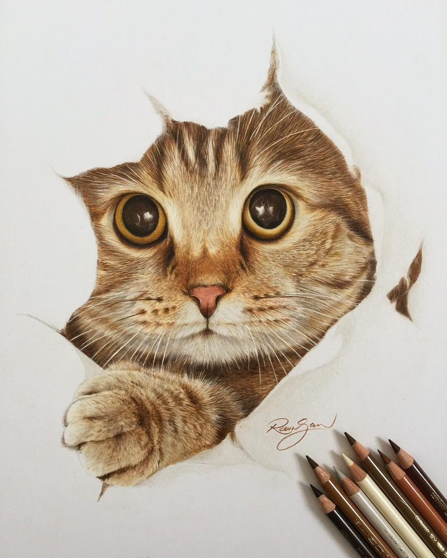 02 kitten robin gan realistic color pencil animal