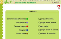 http://www.ceiploreto.es/sugerencias/A_1/Recursosdidacticos/SEGUNDO/datos/03_cmedio/03_Recursos/actividades/03/act4.htm