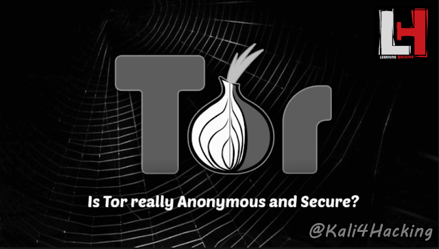 How to use tor browser to surf the web anonymously