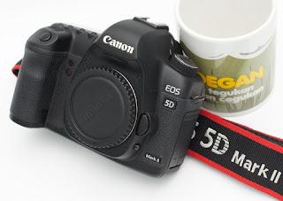 Jual Canon EOS 5D Mark II Bekas