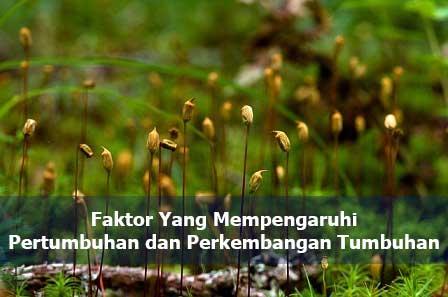 Faktor Yang Mempengaruhi Pertumbuhan dan Perkembangan Tumbuhan, bukusemu