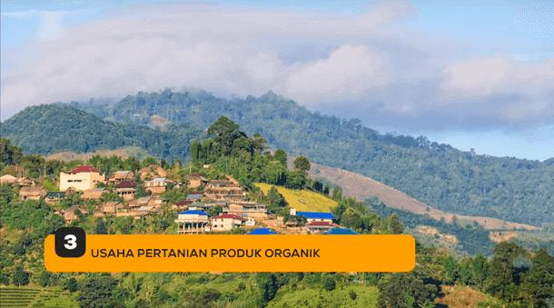 3. Usaha Pertanian Produk Organik