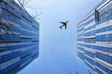 Reverse bird view