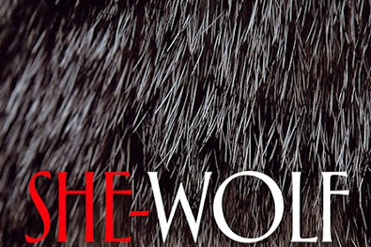 Gaming Events 2019 - OUT NOW: She-Wolf: A Cultural History of Female Werewolves (Manchester University Press, 2015) - infogaming7.blogspot.com