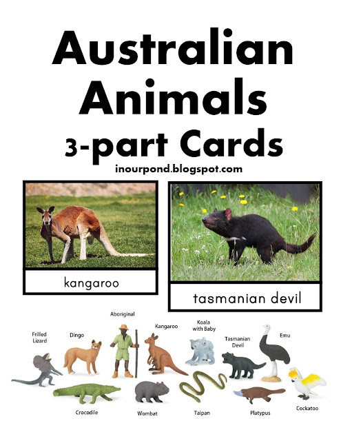 FREE 3-Part Cards for Safari Ltd Australia Toob from In Our Pond