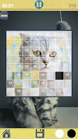 puzzles de gatos