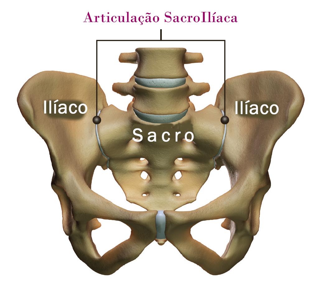 Skate Saúde: Dor lombar X sacroilíca no skate