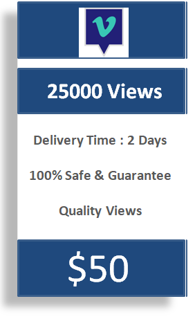 25000 Vimeo Views