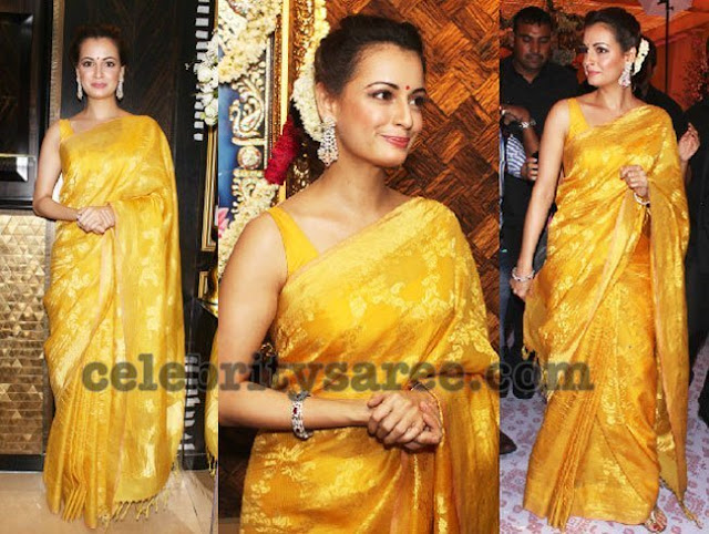 Dia Mirza Latest Silk Sarees