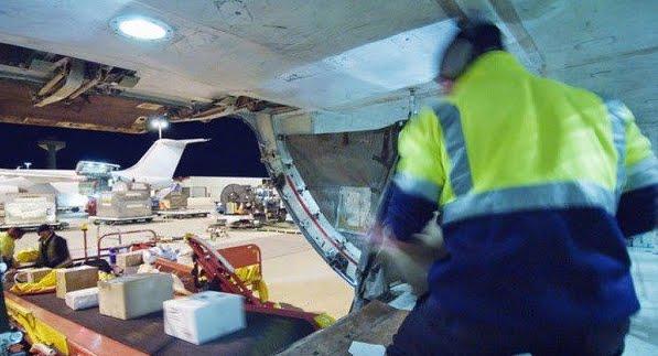 American Airlines decolla con il facchino addormentato nella stiva
