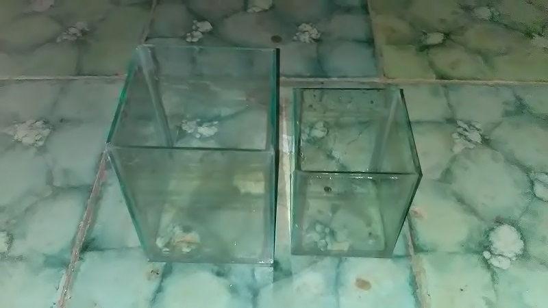 Gambar Daftar Harga Aquarium Ikan Cupang