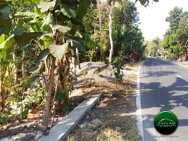 Tanah Tepi jalan Aspal dekat Kampus UMY