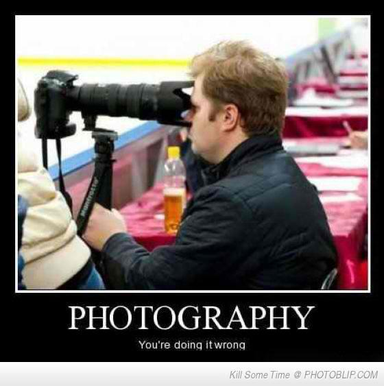 funny photos - Bing images