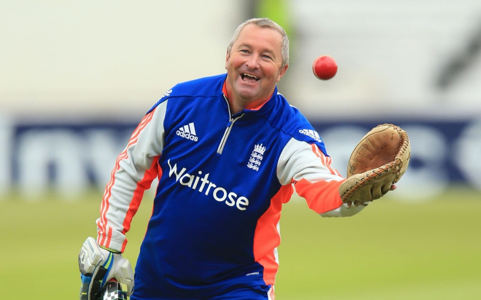 Paul Farbrace confirms interest in England head coach role