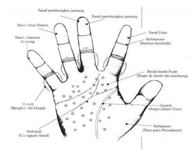 Deteksi Penyakit Melalui Telapak Tangan