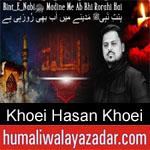 https://www.humaliwalyazadar.com/2019/01/khoei-hasan-khoei-ayyam-e-fatima-noha.html