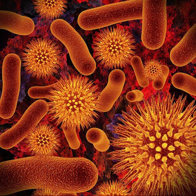 Mikroba Jurassic yang berasal dari jaman prasejarah