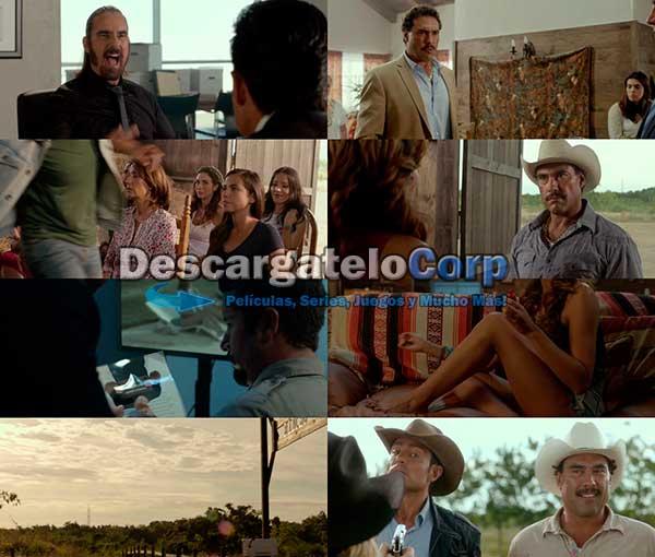 Ladrones DVDRip Latino