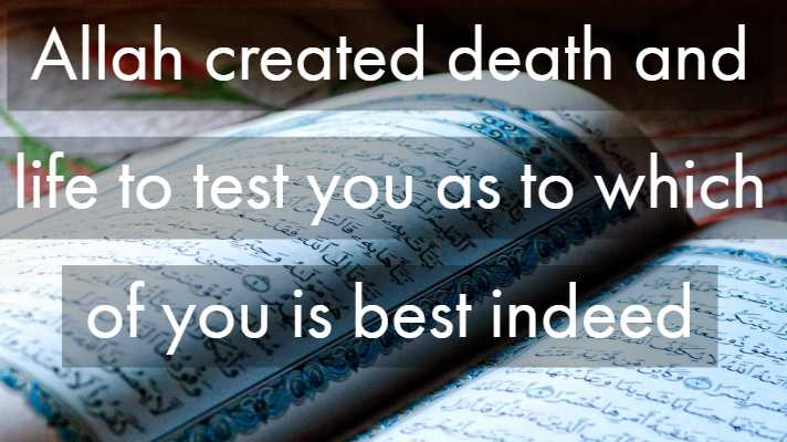 Islamic Quote About Death Life After Death In Islam Delectable Quotes About Death And Life