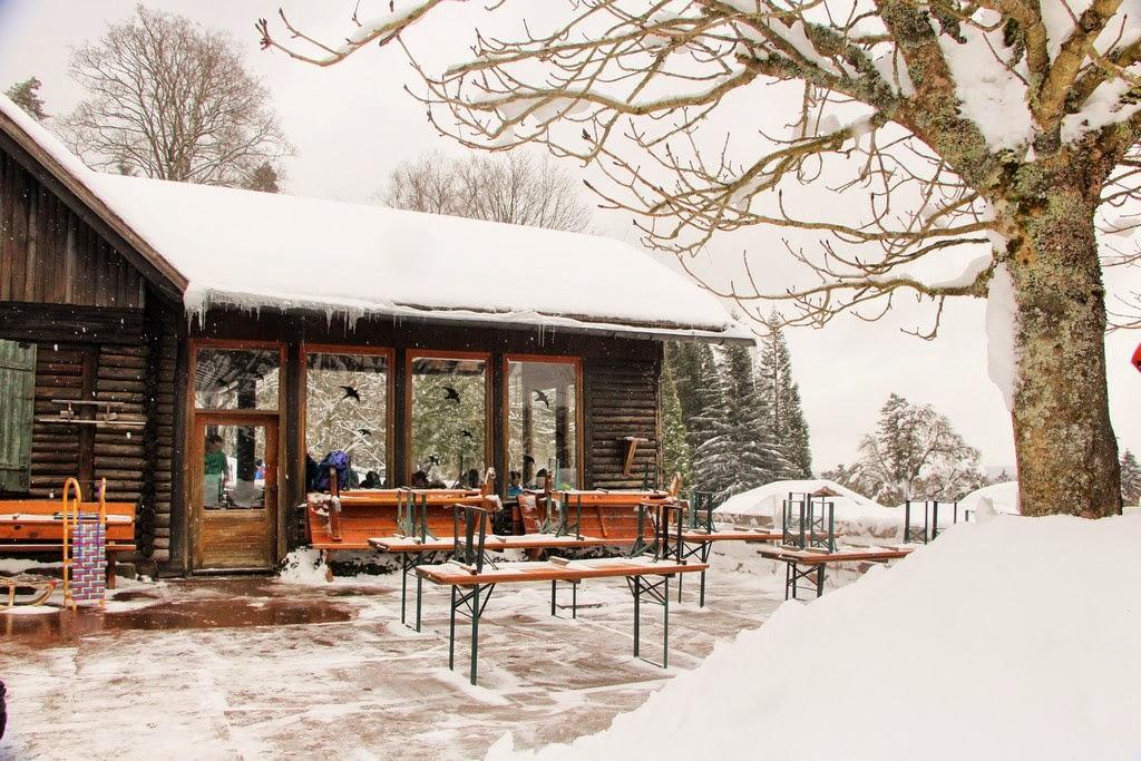 Grünhütte Kaltenbronn, Deutschland