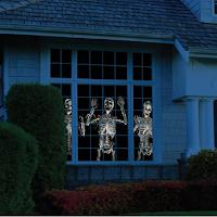 images de squelettes projeter sur fenêtre pour Halloween