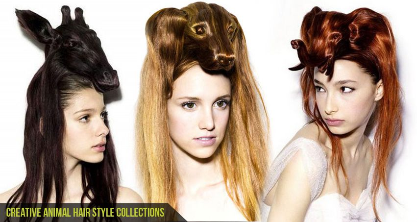 B Styled Hair Collection: CGfrog: Creative Animal Hair Style Collections