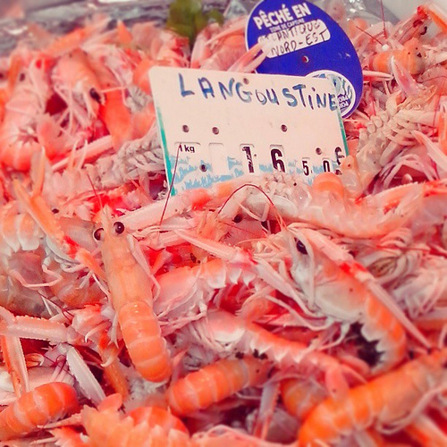 Behind the French Menu: Langoustine – The Dublin Bay Prawn, Scampi or Norwegian Lobster on ...