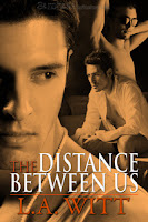 Review: The Distance Between Us by L.A. Witt