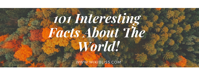 interesting facts,interesting facts about the world,unknown facts of the world,interesting facts about the world and technology,interesting facts around the world,some interesting facts about world,amazing facts about the world