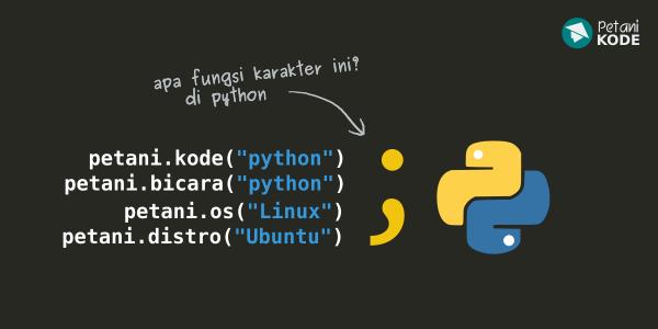 Manfaat Titik Koma pada Python