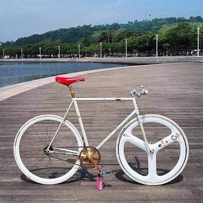 sức hút từ xe đạp fixed gear 2