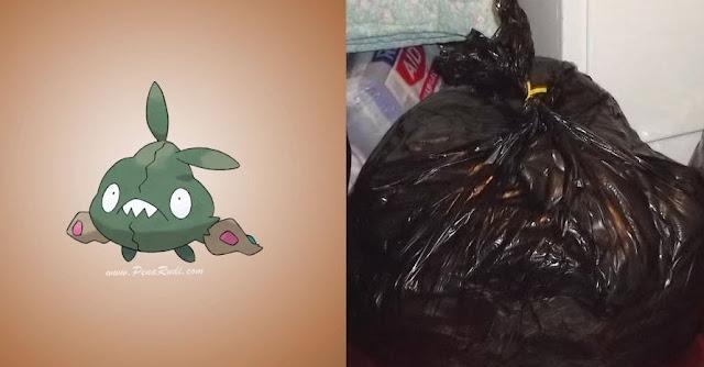 Inilah Inspirasi Karakter Pokemon Di Dunia Nyata! Bahkan Sampah Pun Jadi Inspirasi